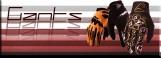 Gants de motocross